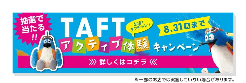タフト試乗・体感キャンペーン